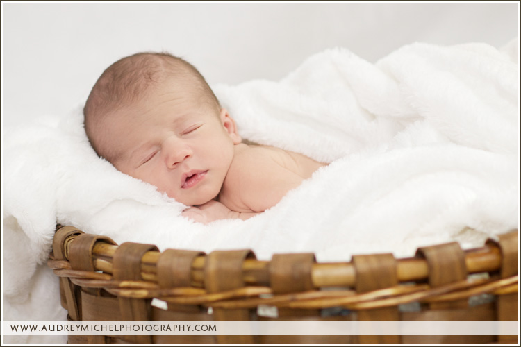 Denver Newborn Portrait Photographer, AudreyMichel Photography, on location baby portraits