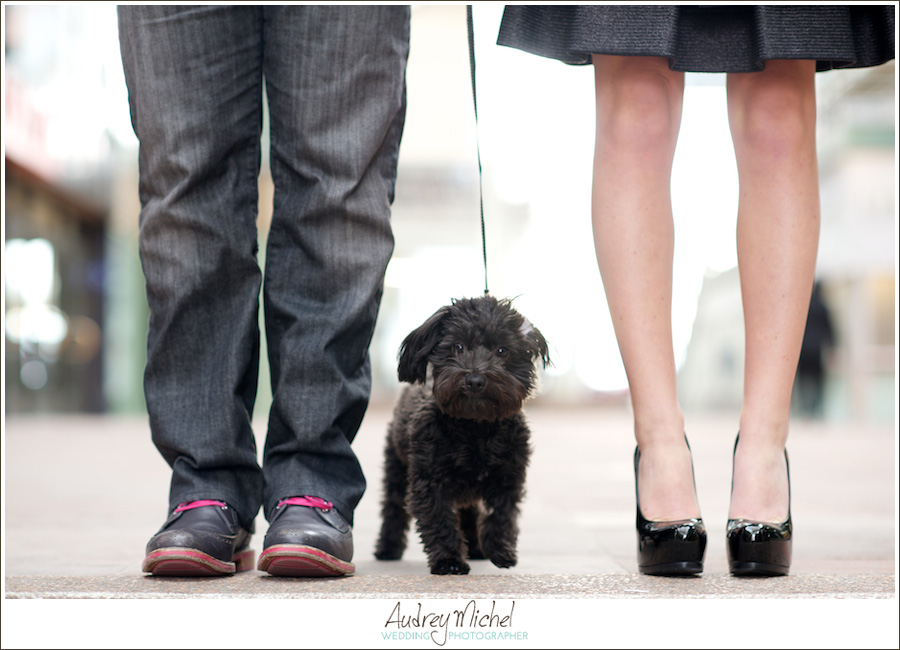 urban engagement shoot, bring your puppy, city engagement photographer